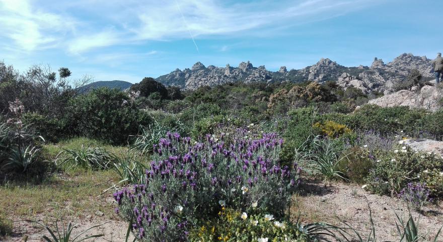Cammina Italia CAI: la cerimonia inaugurale e le tappe della staffetta in Sardegna