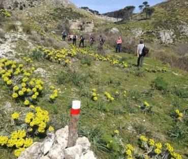 La staffetta cammina in Sicilia: le mille suggestioni della Conca d'Oro