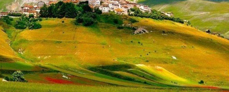 Tempo di Rifioritura: sul Sentiero Italia Cai in Umbria si cammina in mezzo a una tavolozza