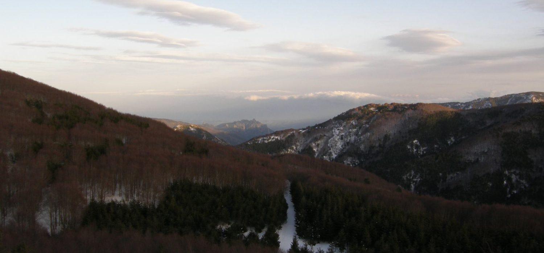 Il Sentiero dei Sapori: Il parco nazionale dell'Aspromonte nel piatto