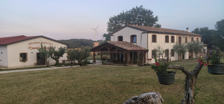 Agriturismo Masseria Pasqualone: turismo lento e tradizioni gastronomiche