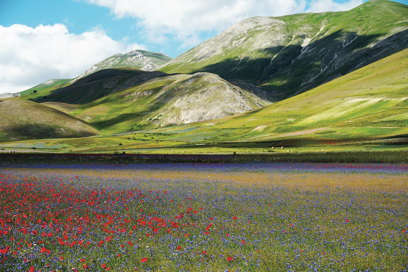 Molise, Abruzzo, Lazio, Marche, Umbria: il vol. 5 delle nuove Guide ufficiali Sentiero Italia CAI